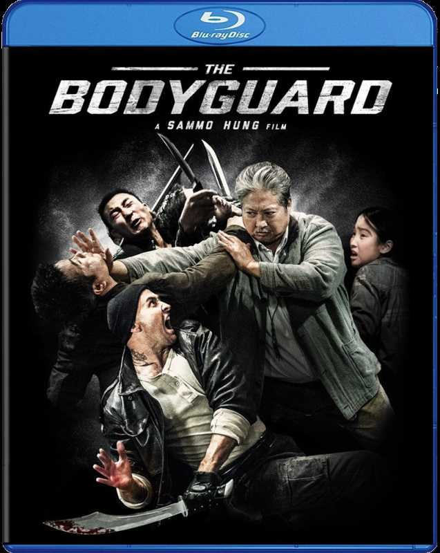 My Beloved Bodyguard 2016 720p Esub BluRay  Dual Audio Chinese Hindi GOPISAHI