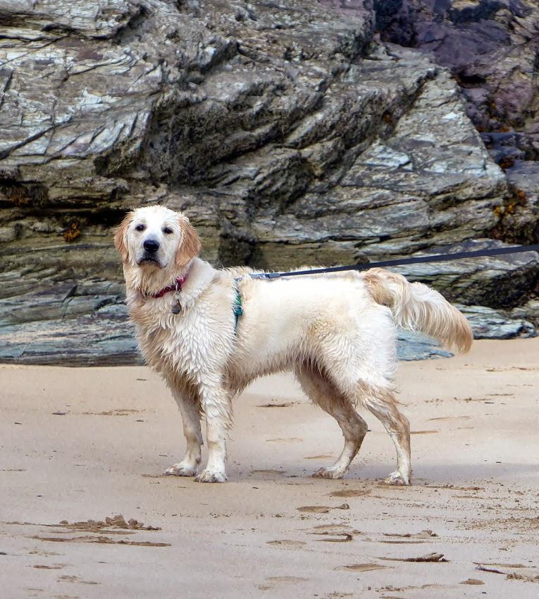 Beach Babe!