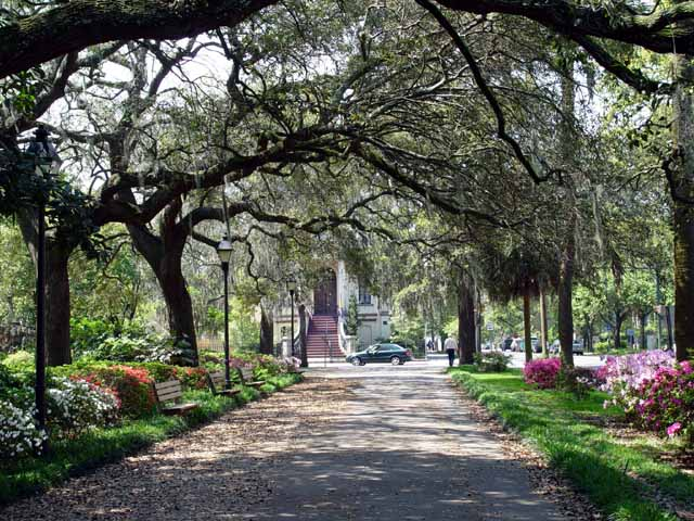 Charleston South Carolina Tourist Attractions Charleston Sc Attractions Charleston Hotels