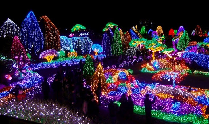 South Korea Lighting Show