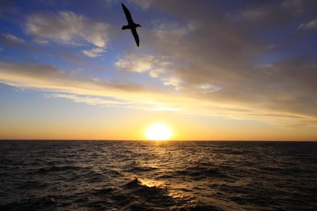quisiera estar cerca del mar