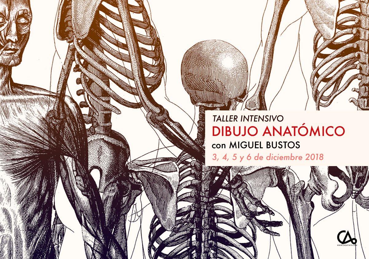 Intensivo dibujo anatómico 3 de dic