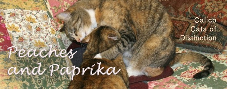 Peaches and Paprika