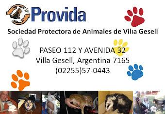 Sociedad Protectora de Animales de Villa Gesell