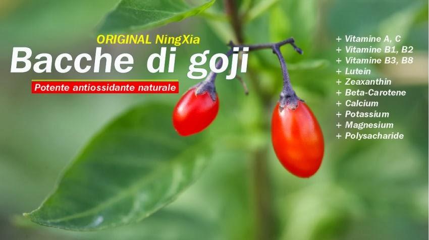 Potente antiossidante naturale