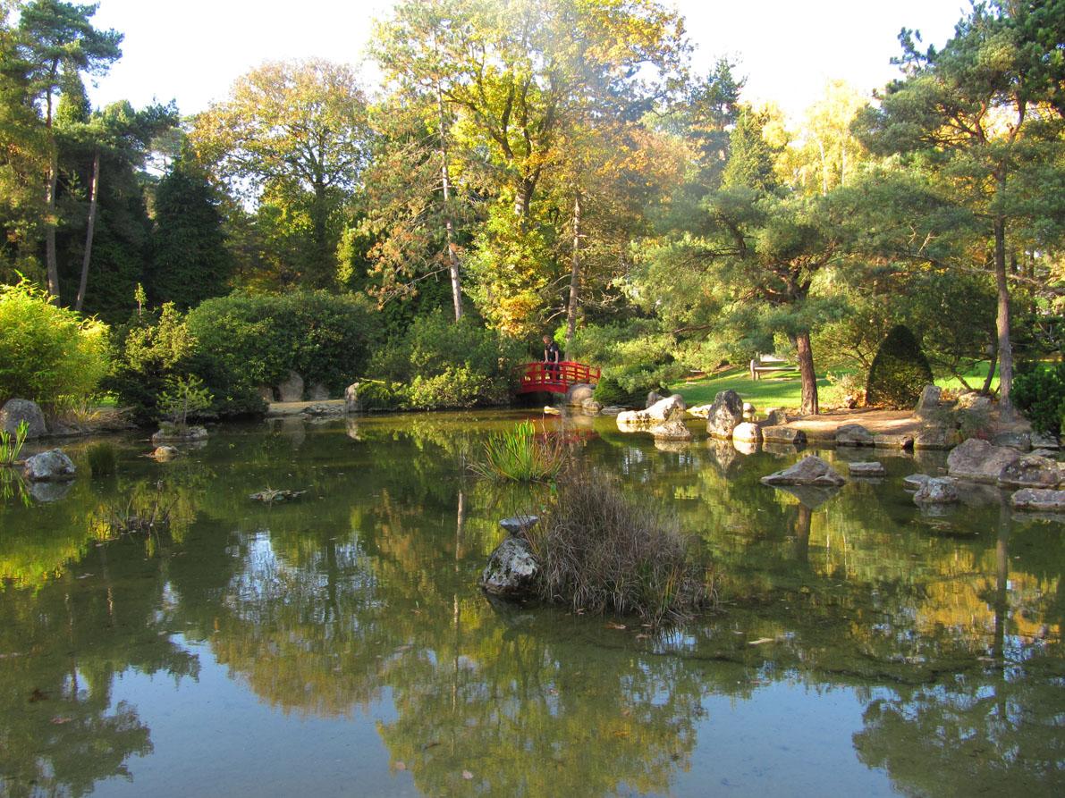 Paradis express le jardin japonais du centre hospitalier for Le jardin du maraicher 91