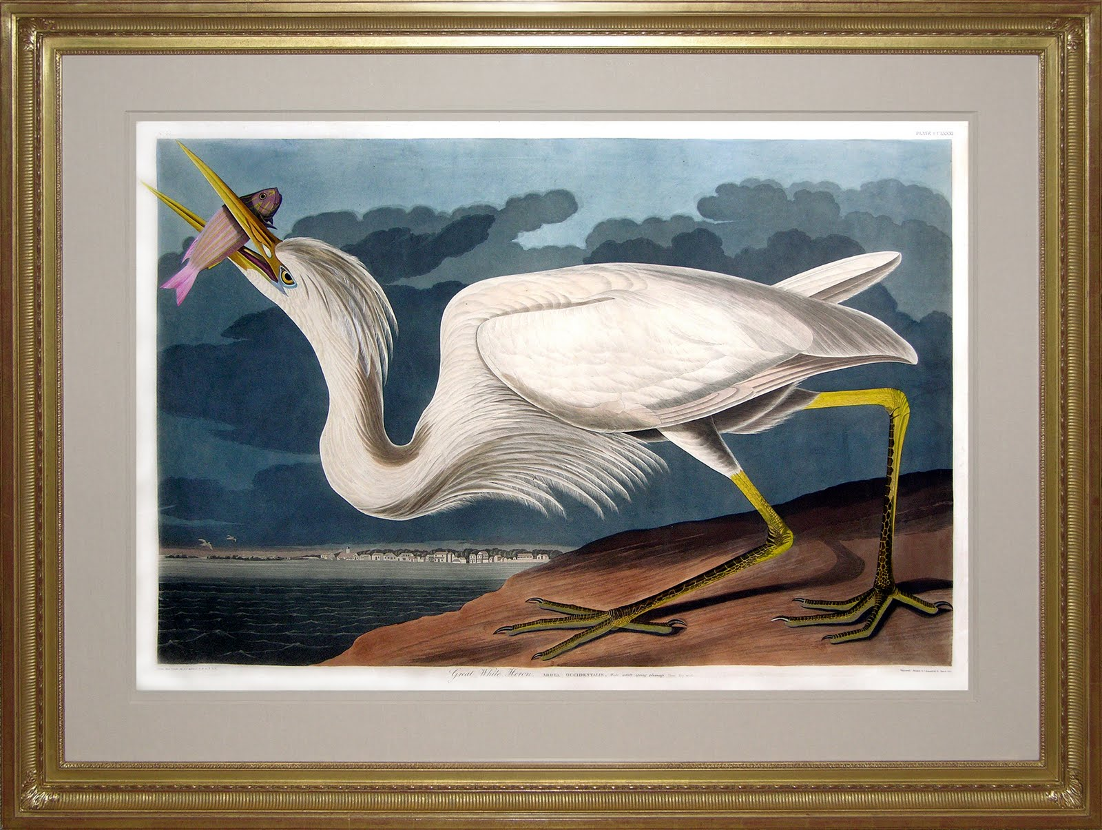 symbolism in the white heron