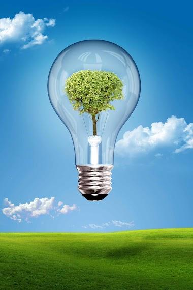 10 coisas interessantes sobre sustentabilidade