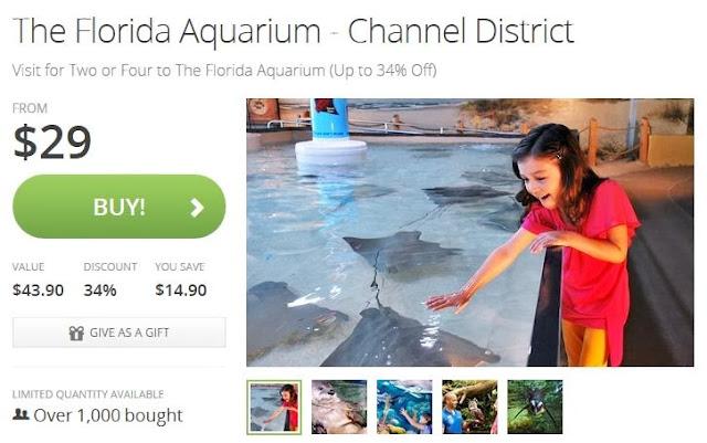 http://www.anrdoezrs.net/click-779211-10795790?url=http%3A%2F%2Fwww.groupon.com%2Fdeals%2Fthe-florida-aquarium-12