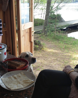 People and a dog waiting to enjoy the hot smoked salmon