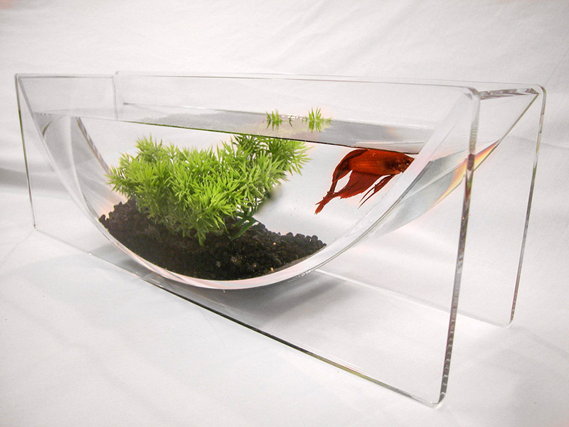the betta bowl and aqua u modern tabletop fish tanks from