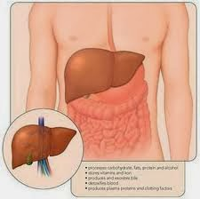 Penyebab Penyakit Hepatitis