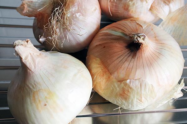 cipolle, zafferano, contorno, verdura, vegetariano, Sicilia, Giarratana