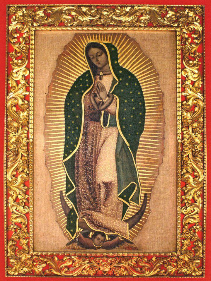Nuestra Señora de Guadalupe dans immagini sacre lienzo+El+Carrizal