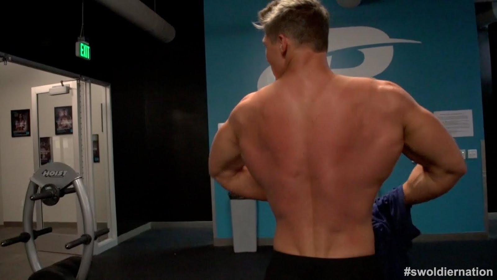 筋肉 肩 の