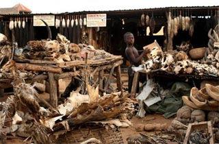 Akodessewa Togo Pasar Sihir Di Dunia