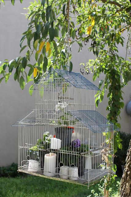 Colaboración programa Jardineras - Utilísima / Deco Marce