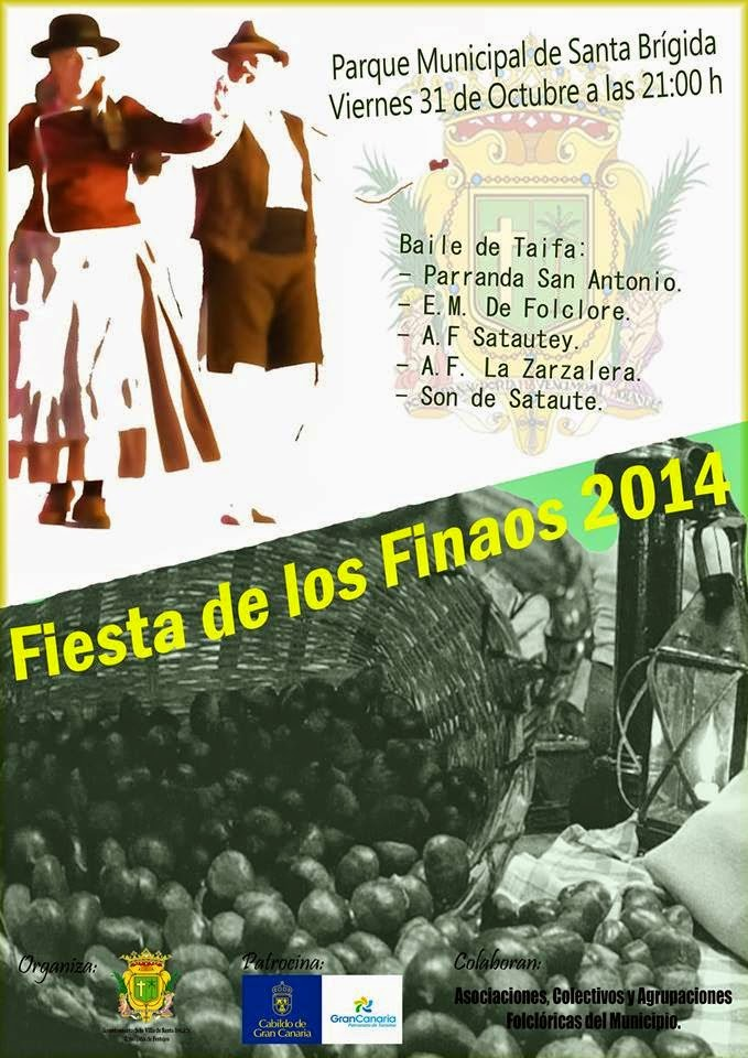 Santa Brígida: Finaos 2014