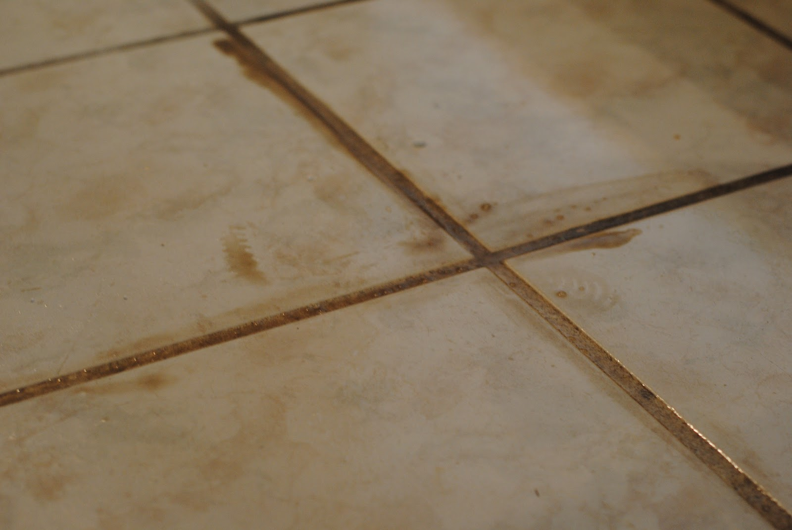 How to clean a tile floor with white vinegar