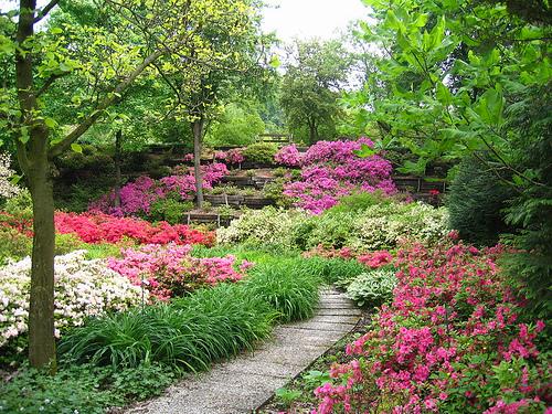 Piante e fiori come realizzare un piccolo giardino - Giardini curati ...