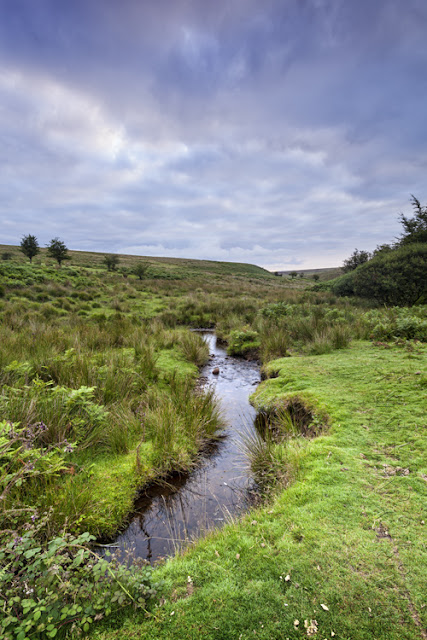 A little stream flows through the Exmoor landscape by Martyn Ferry Photography