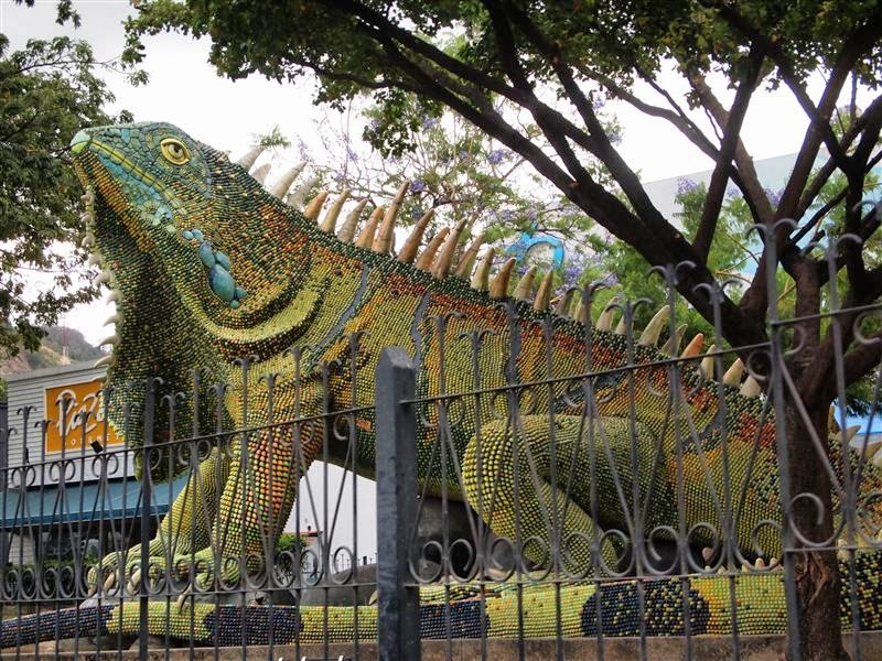 Iguana verde de Guayaquil