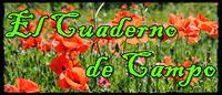 http://elcuadernodecampojl.blogspot.com.es/