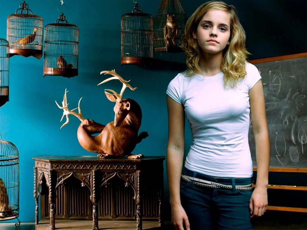 http://4.bp.blogspot.com/-zk6UBmFmaGg/Th-kqzOttTI/AAAAAAAABoI/VYzrPqysn_I/s1600/Emma+Watson+cute+picture.jpg