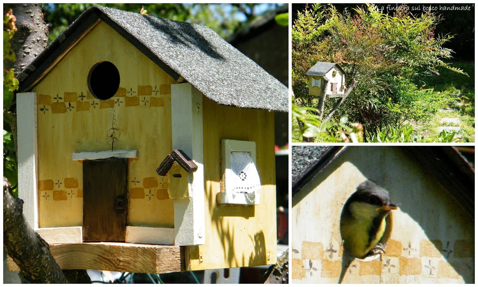 La finestra sul bosco handmade casetta nido e primo volo for Quanto costruire una casetta
