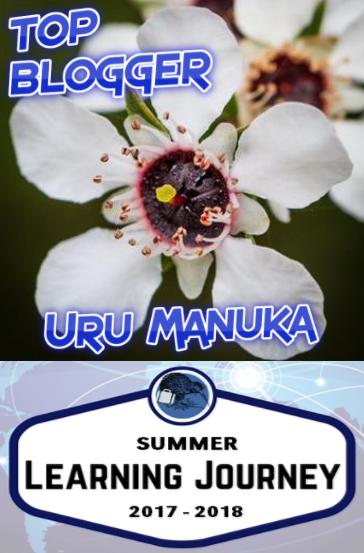 2nd Place Summer Blogging Challenge