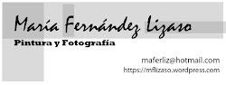 PATROCINADOR MARIA FERNANDEZ LIZASO