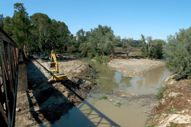 Restauración ambiental junto al puente de hierro de la Junta de los Ríos