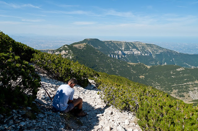 Sentiero per il Monte Focalone