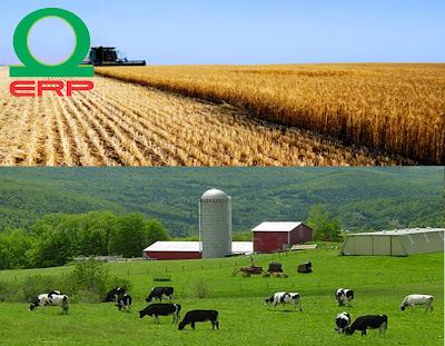 kế toán nông nghiệp
