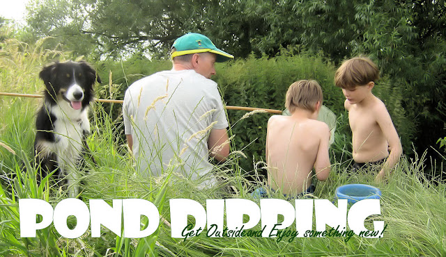 Pond Dipping family activity fun with nature