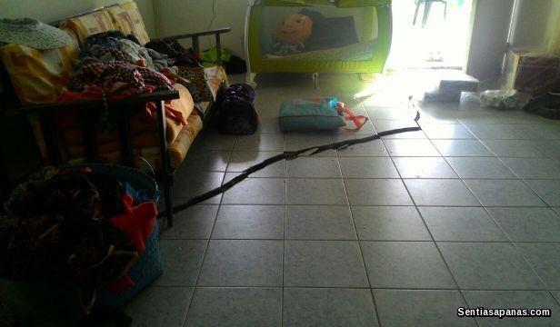 Gempa+Bumi+Kundasang+Sabah [2]