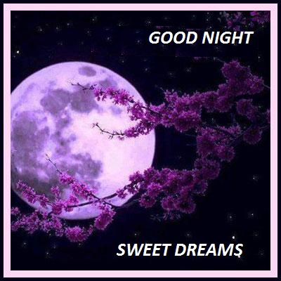 good+night+sweet+dreams+NEW.jpg