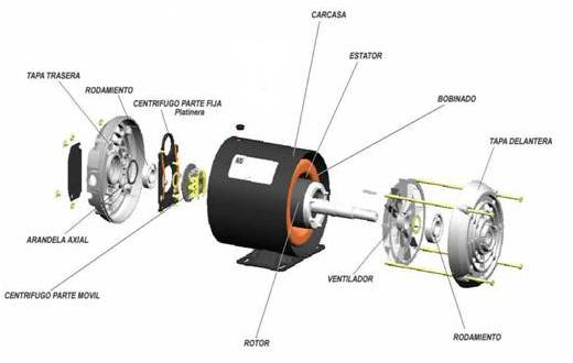Emerson 2 Speed Motor Wiring Diagram moreover Types Of Single Phase Induction Motor likewise Ao Smith Pool Pump Motor Wiring Diagram likewise Single Phase Two Sd Motor Wiring Diagrams in addition 3 Phase 4 Pole Stepper Motor Schematic. on single phase shaded pole motor diagram