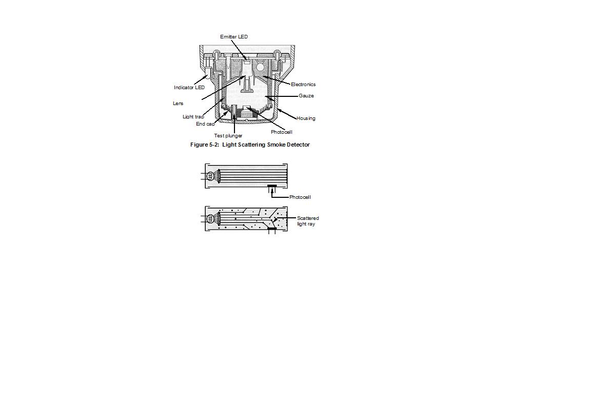 pdf the bagel