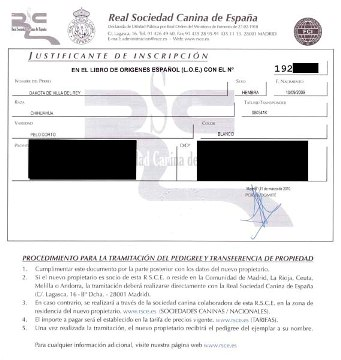 Libro_Origenes_Español
