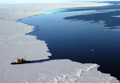 Hutan Tropis Ditemukan di Antartika
