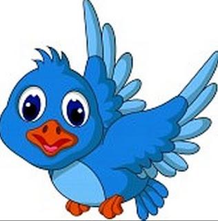 El ave en libertad es muy feliz