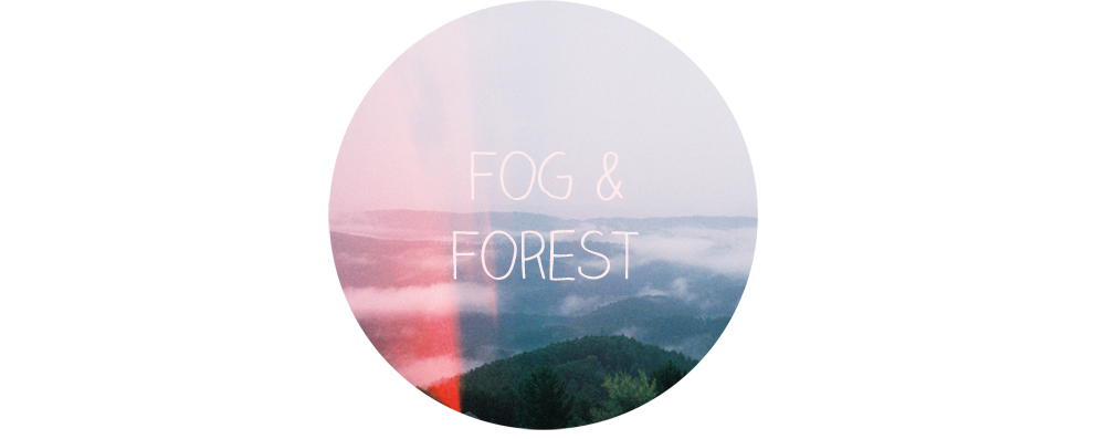 Fog &amp; Forest