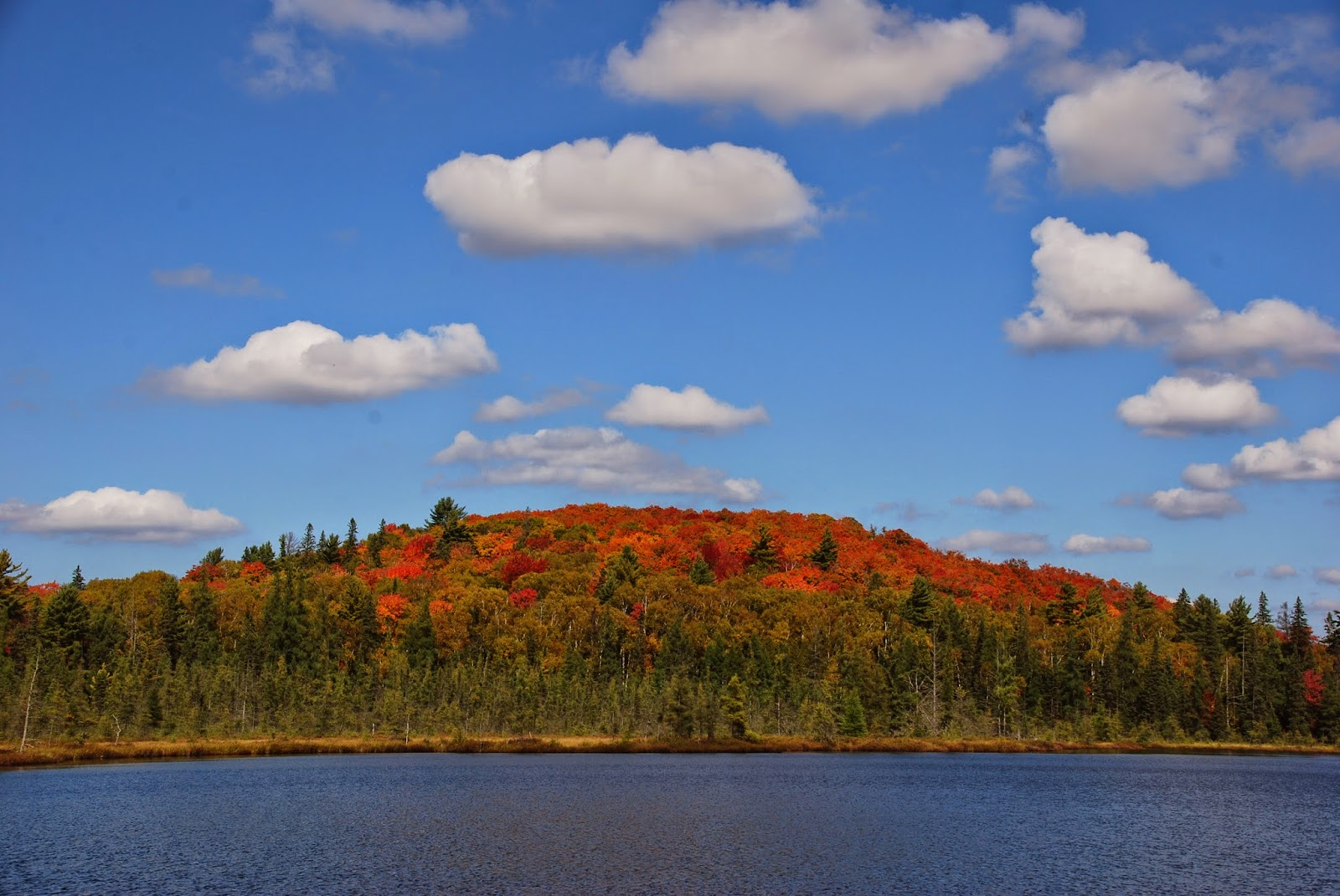 Mizzy Lake with Fall colours on the trees