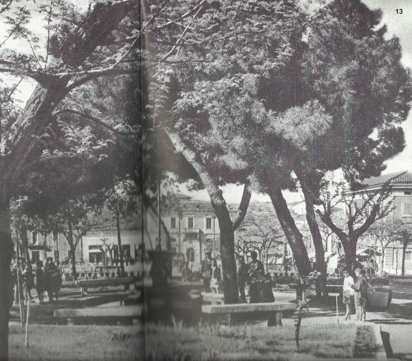 Biasu e billia gemelli d 39 una sacca circolo della libera - Il giardino degli esperidi ...