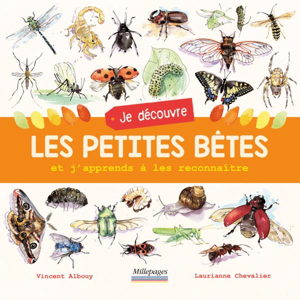 Ma dernière publication : Je découvre les petites bêtes (texte Vincent Albouy), oct. 2016