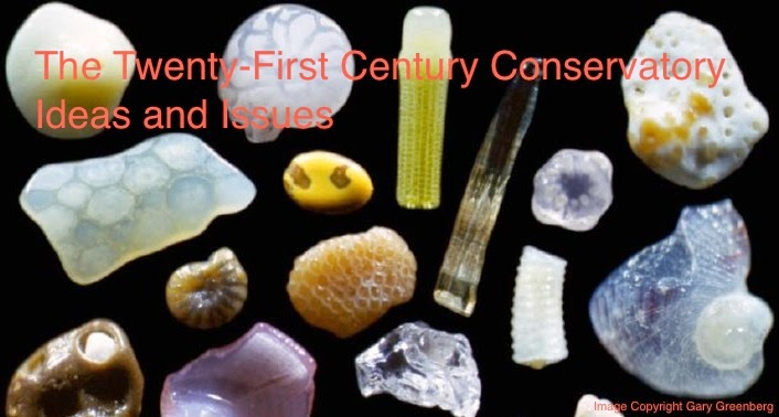 The 21st Century Conservatory