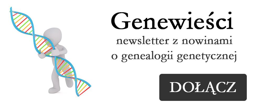 Darmowy newsletter