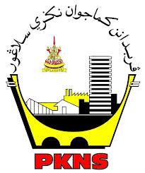 logo pkns