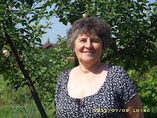 La Gădălin, 9 iulie 2011